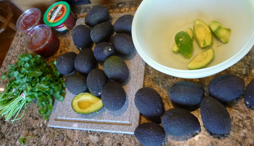 ready to make guacamole